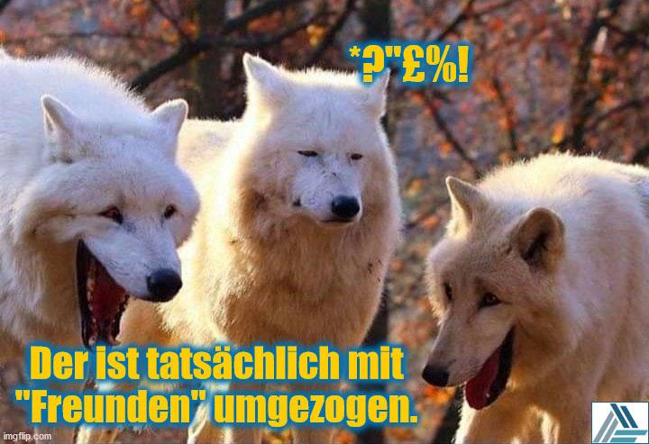 Lachende Wölfe